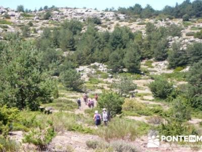 Pinar de Canencia y Mina de Plata del Indiano;asociacion de senderismo;paseos por madrid